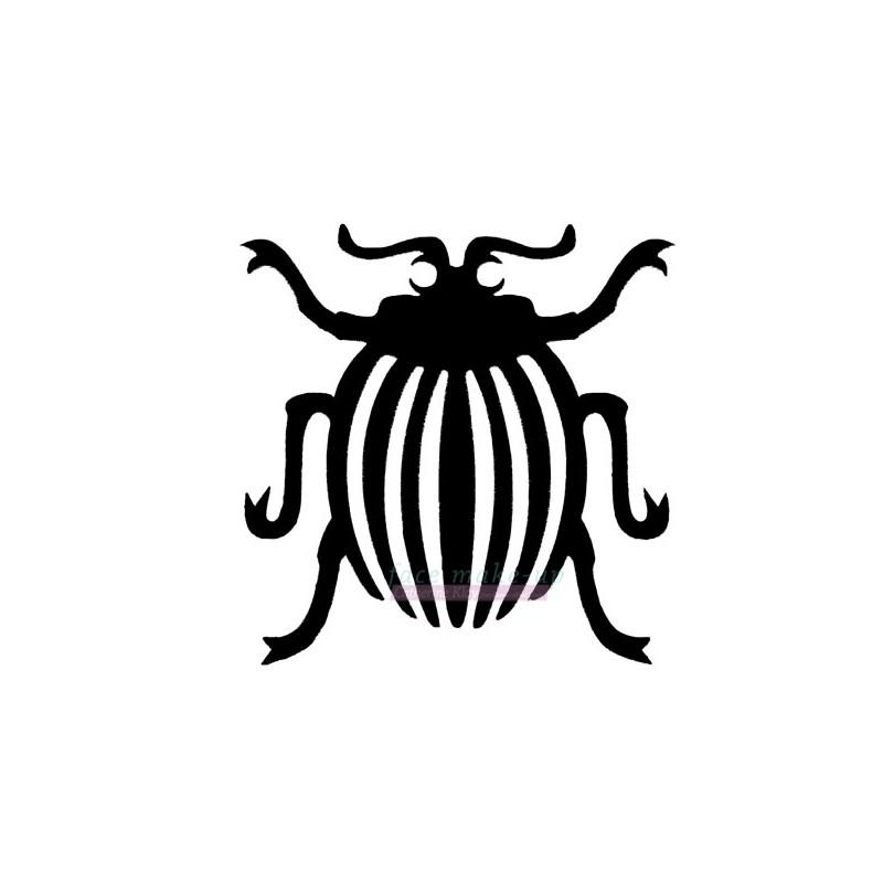 16300 Insecte