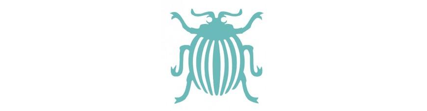 Insekten - Spinnen