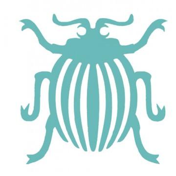 Insectes - Araignées