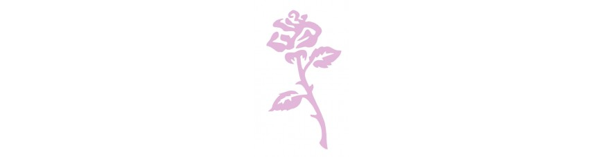 Fleurs - Végétaux