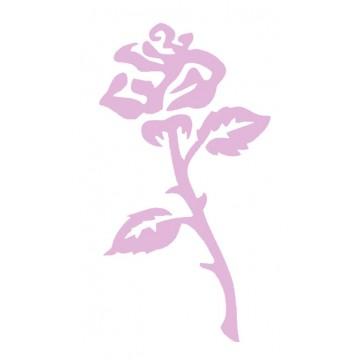 Blumen - Pflanzen